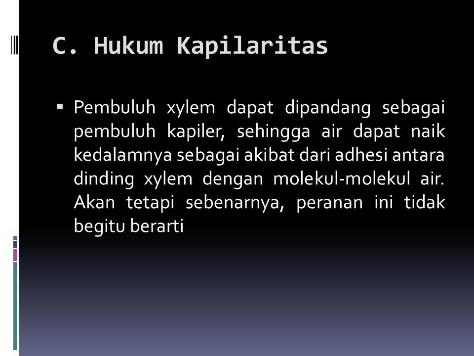 C. Hukum Kapilaritas
