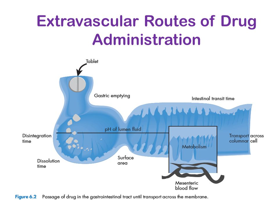 Extravascular Routes of Drug Administration