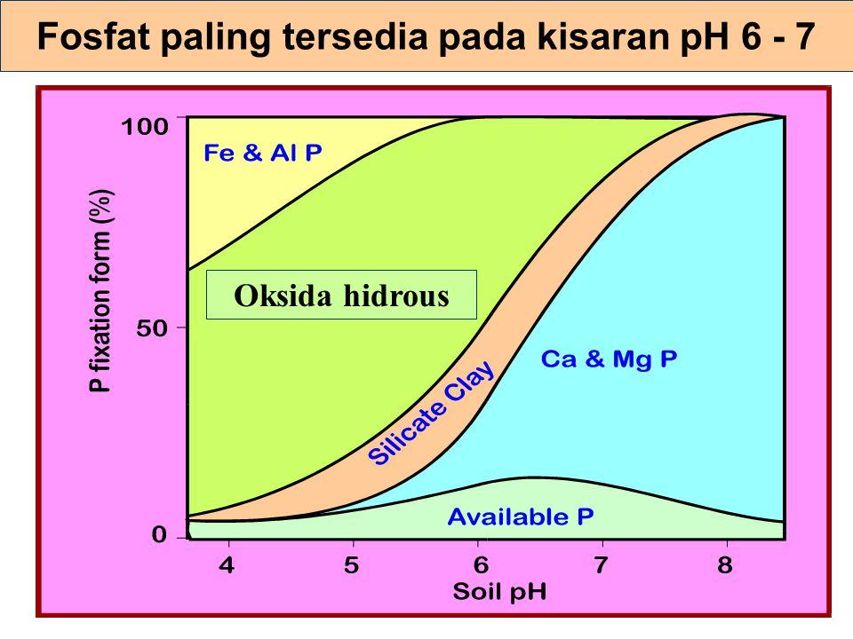 Fosfat paling tersedia pada kisaran pH 6 - 7