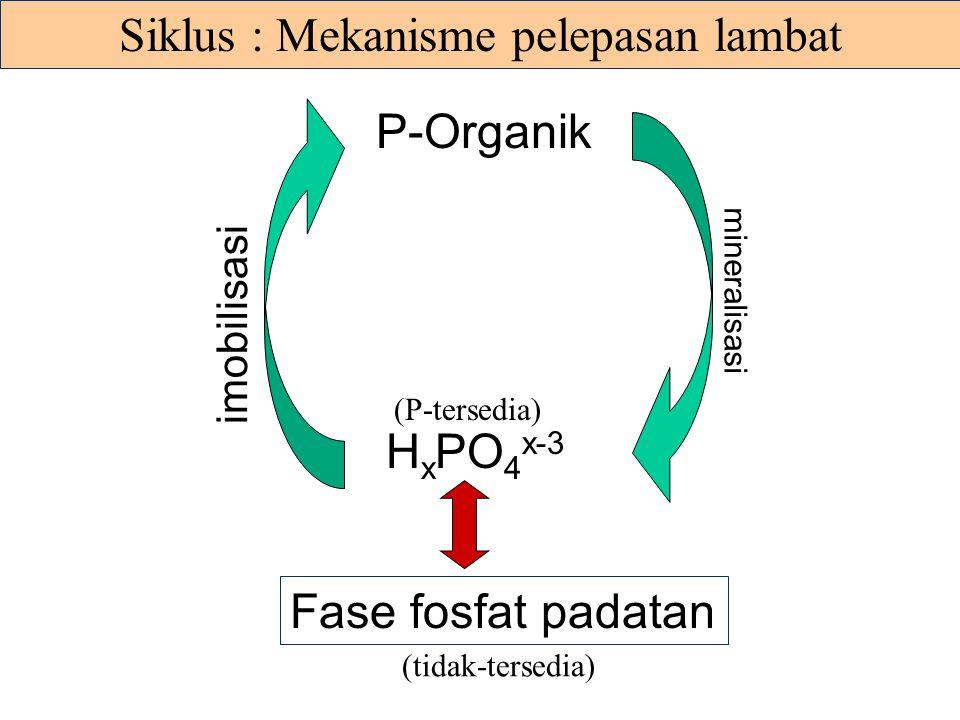 Siklus : Mekanisme pelepasan lambat