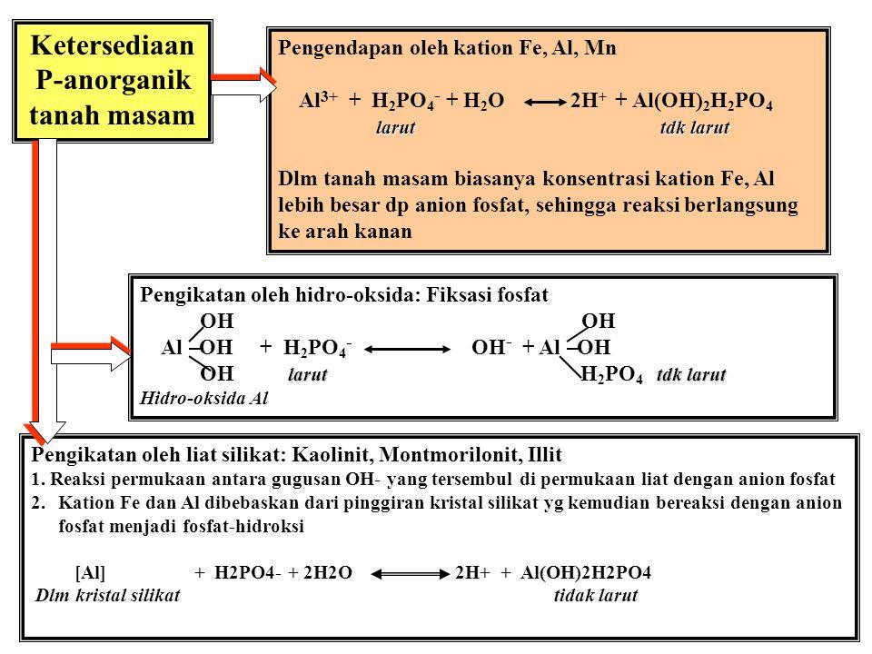 Ketersediaan P-anorganik tanah masam
