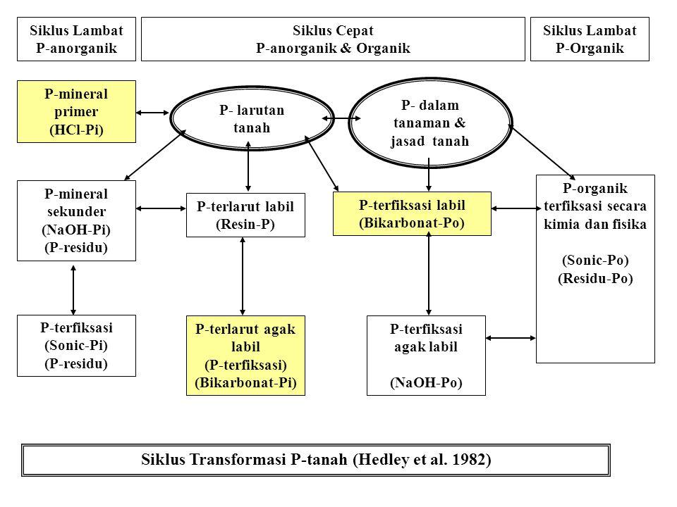 Siklus Transformasi P-tanah (Hedley et al. 1982)