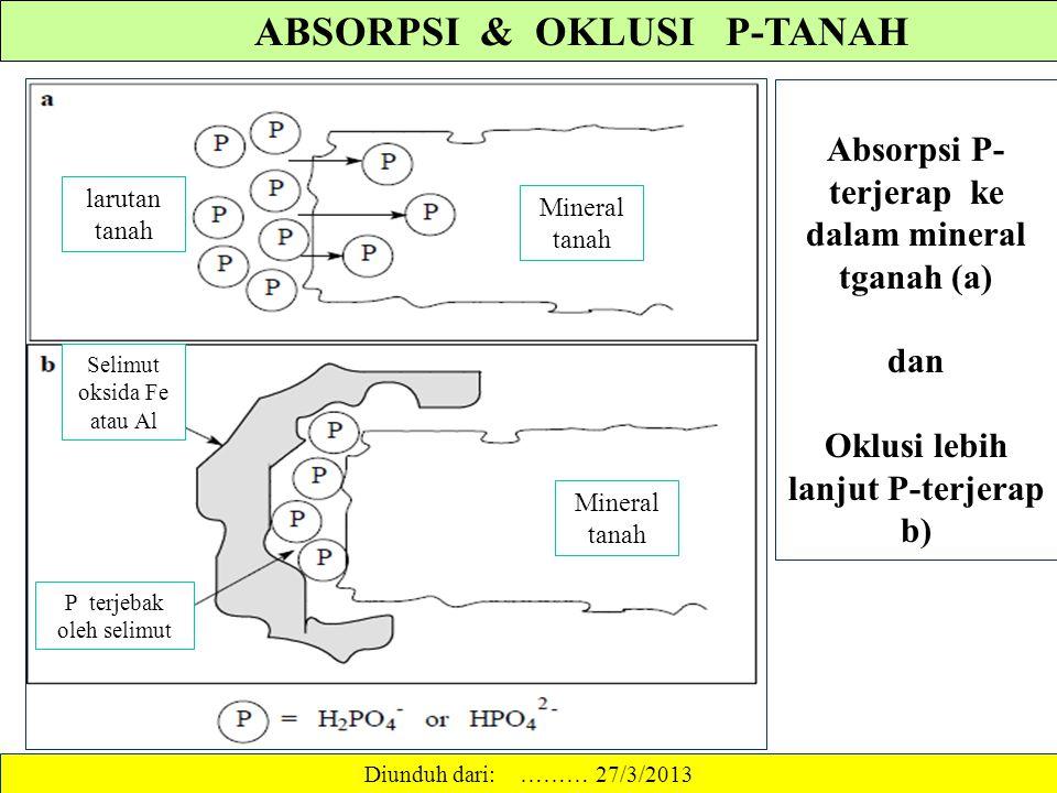 ABSORPSI & OKLUSI P-TANAH