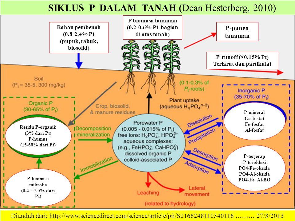 SIKLUS P DALAM TANAH (Dean Hesterberg, 2010)