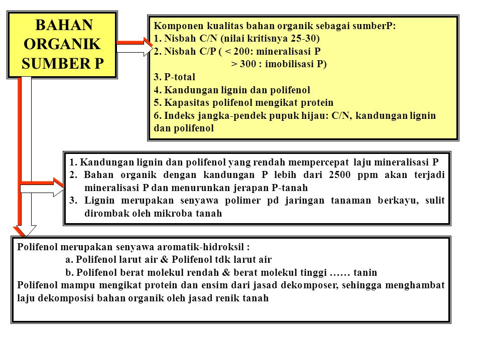 BAHAN ORGANIK SUMBER P Komponen kualitas bahan organik sebagai sumberP: 1. Nisbah C/N (nilai kritisnya 25-30)