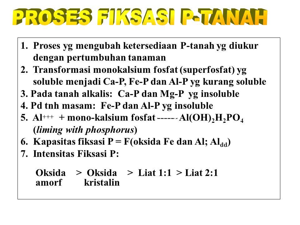 PROSES FIKSASI P-TANAH