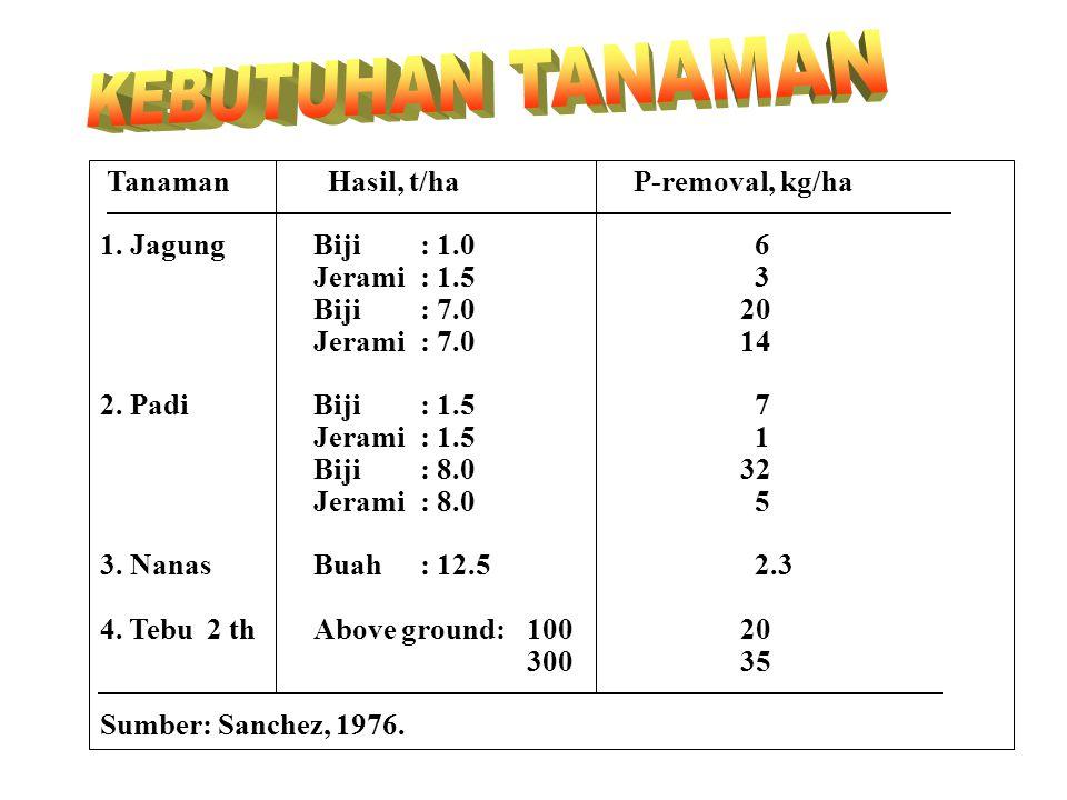 KEBUTUHAN TANAMAN Tanaman Hasil, t/ha P-removal, kg/ha