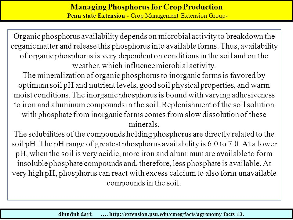 Managing Phosphorus for Crop Production