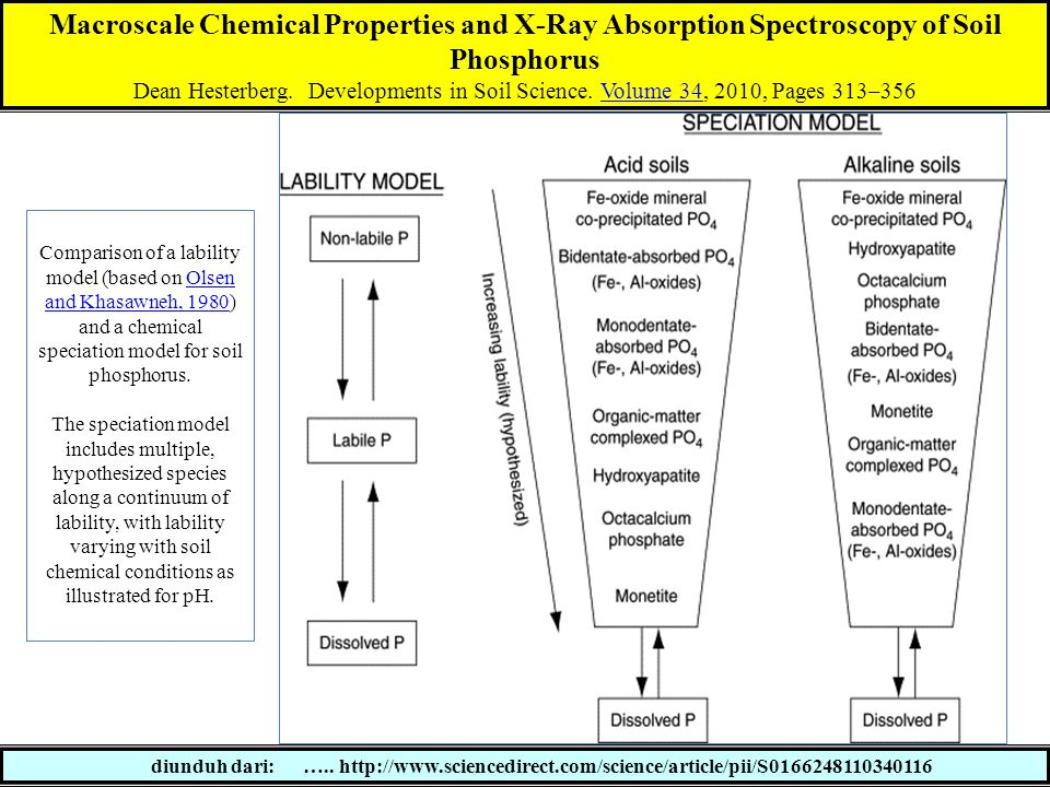 Macroscale Chemical Properties and X-Ray Absorption Spectroscopy of Soil Phosphorus