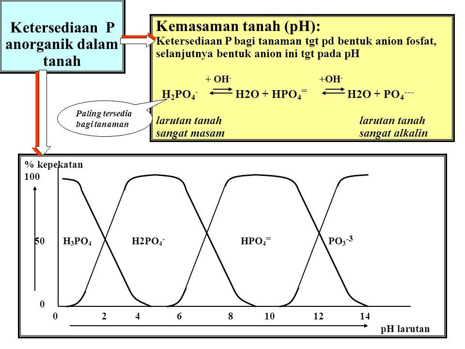 Ketersediaan P anorganik dalam tanah
