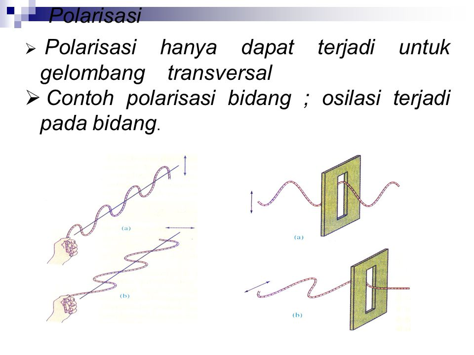 Contoh polarisasi bidang ; osilasi terjadi pada bidang.