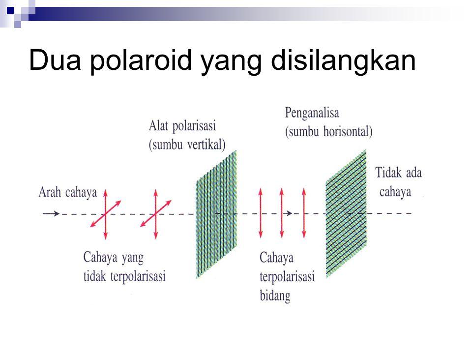 Dua polaroid yang disilangkan