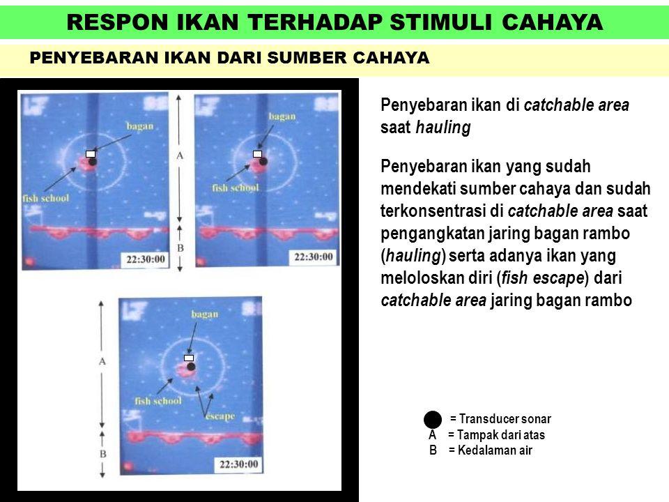 RESPON IKAN TERHADAP STIMULI CAHAYA