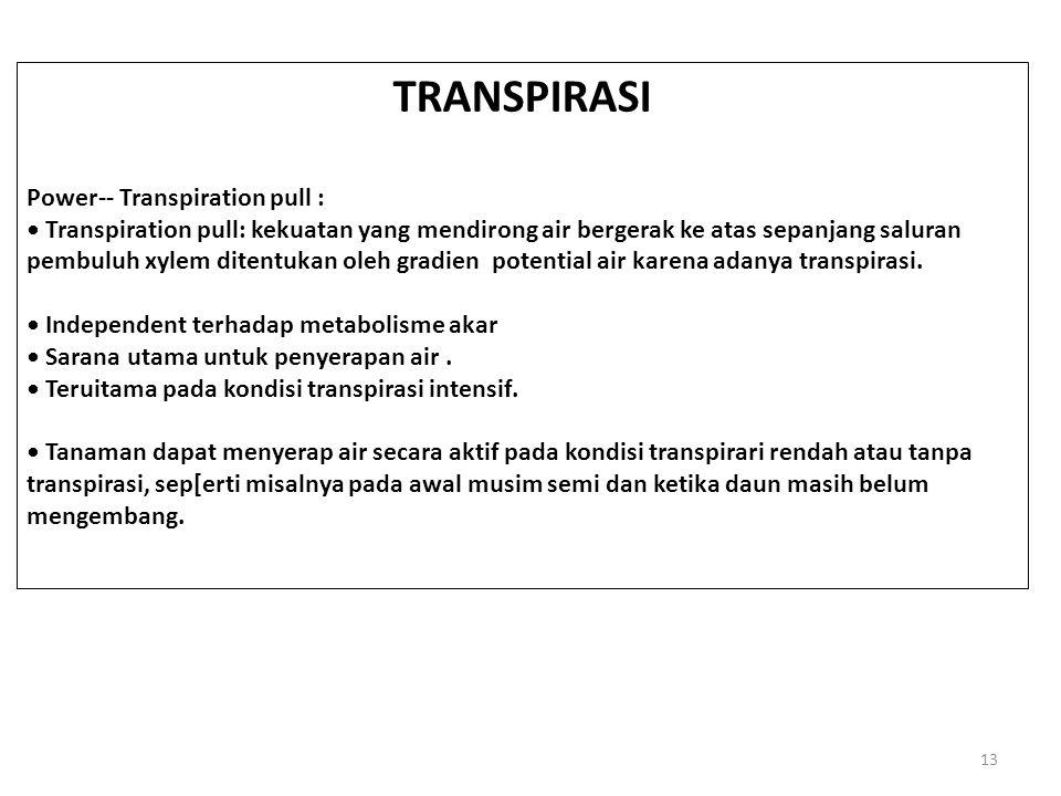 TRANSPIRASI Power-- Transpiration pull :