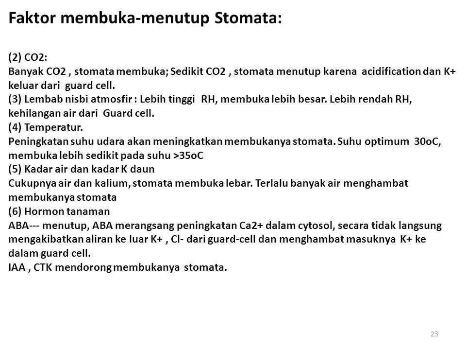 Faktor membuka-menutup Stomata: