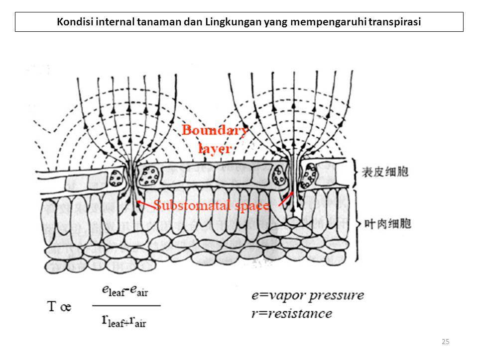 Kondisi internal tanaman dan Lingkungan yang mempengaruhi transpirasi