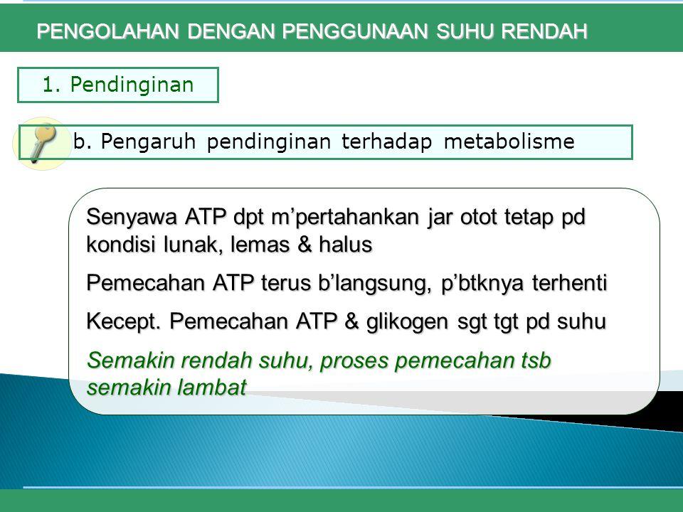 Pemecahan ATP terus b'langsung, p'btknya terhenti