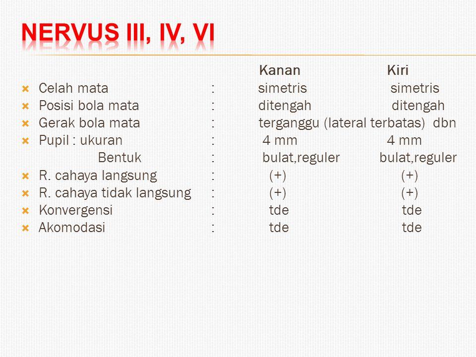 Nervus III, IV, VI Kanan Kiri Celah mata : simetris simetris