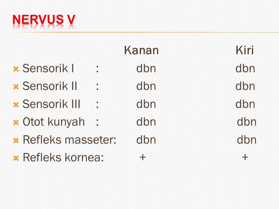 Nervus V Kanan Kiri. Sensorik I : dbn dbn. Sensorik II : dbn dbn. Sensorik III : dbn dbn.