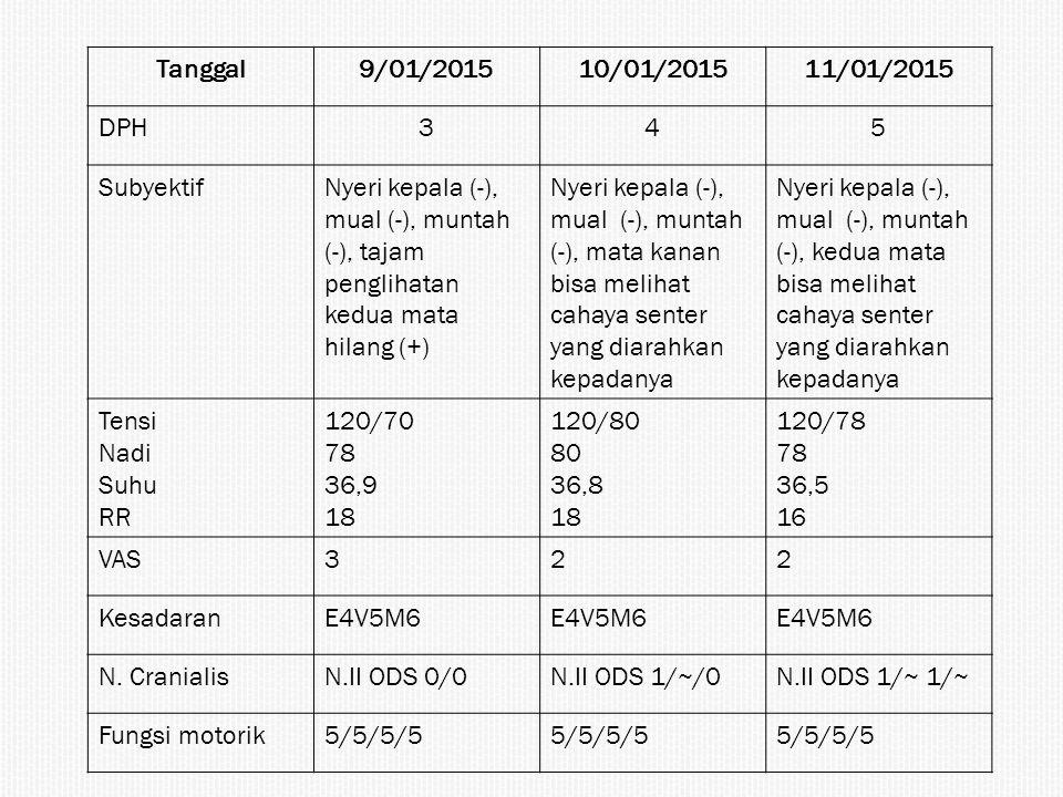 Tanggal 9/01/2015. 10/01/2015. 11/01/2015. DPH. 3. 4. 5. Subyektif.