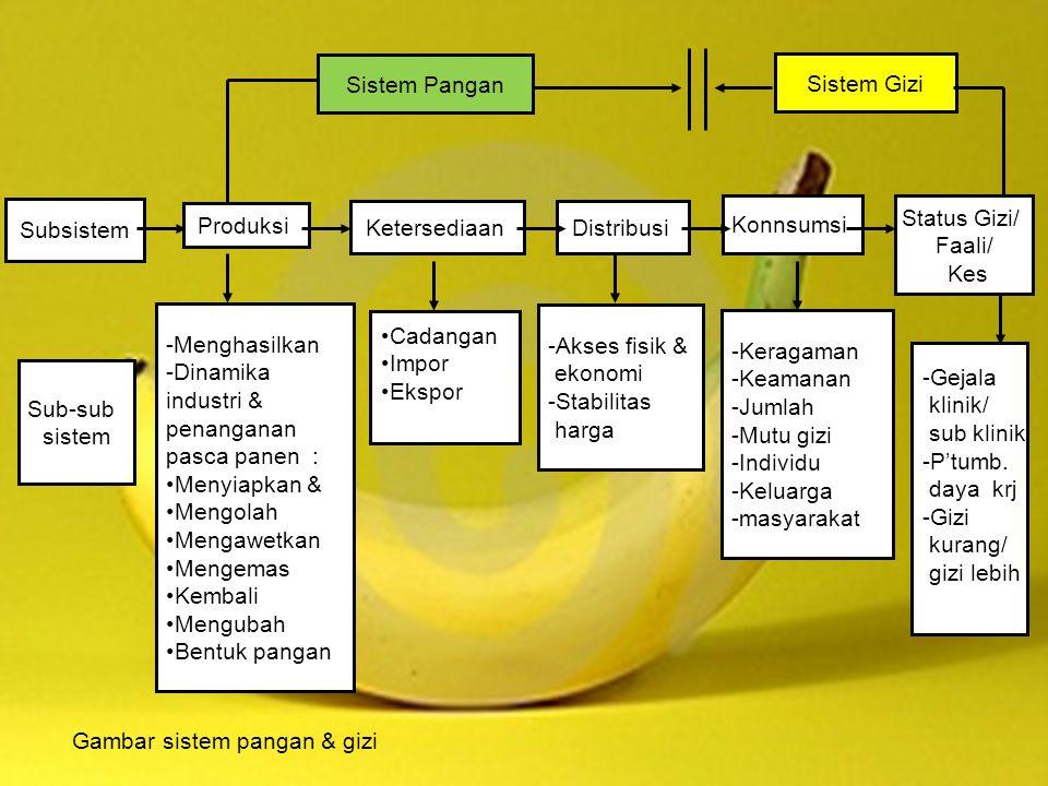 Sistem Pangan Sistem Gizi. Subsistem. Konnsumsi. Status Gizi/ Faali/ Kes. Produksi. Ketersediaan.