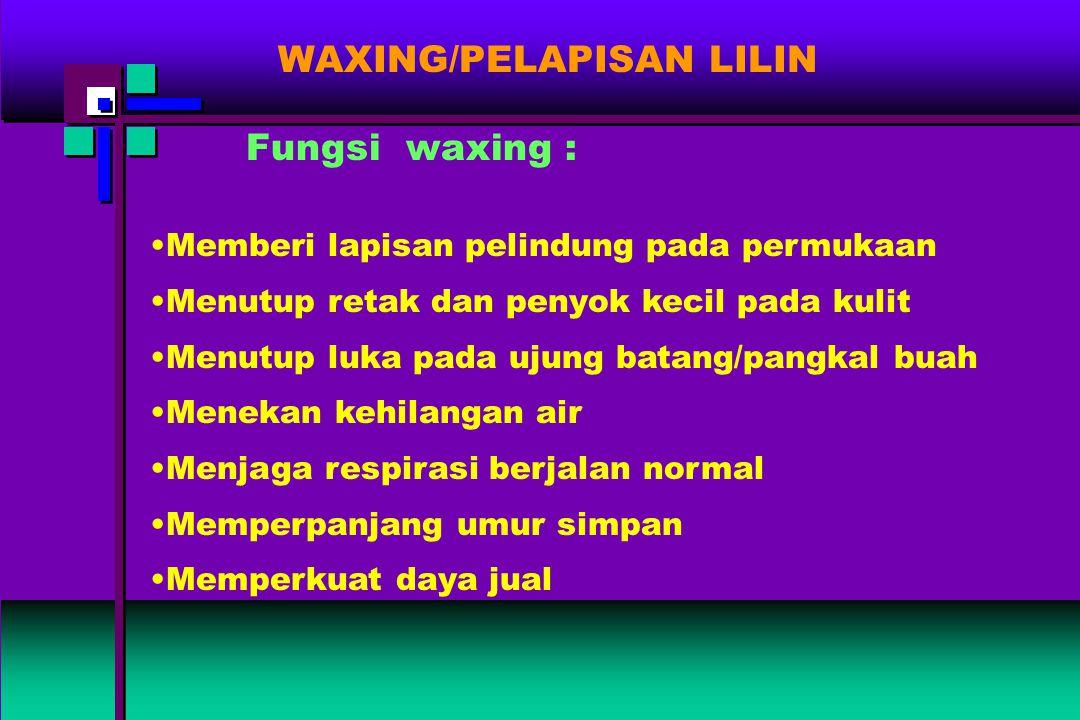WAXING/PELAPISAN LILIN