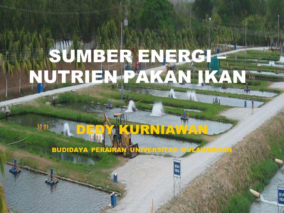 SUMBER ENERGI – NUTRIEN PAKAN IKAN