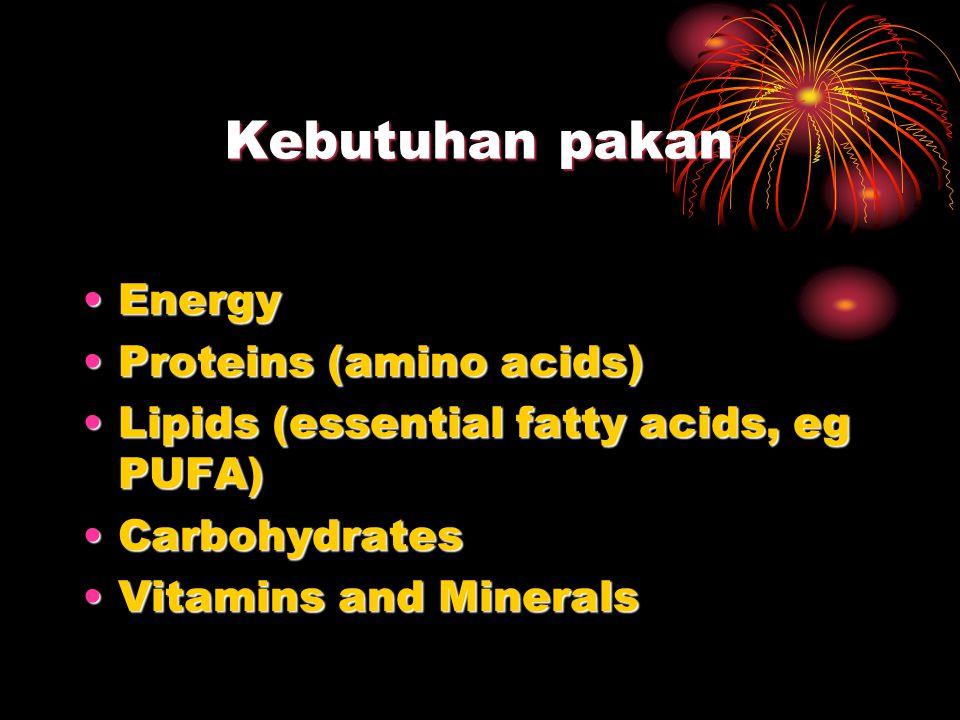 Kebutuhan pakan Energy Proteins (amino acids)