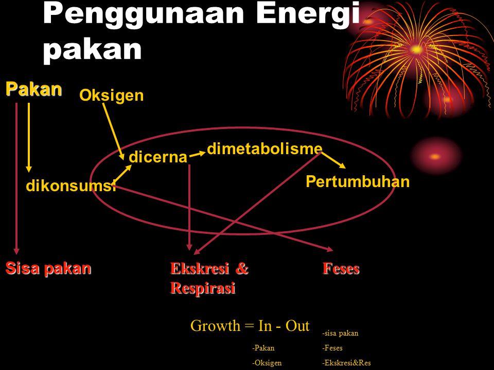 Penggunaan Energi pakan