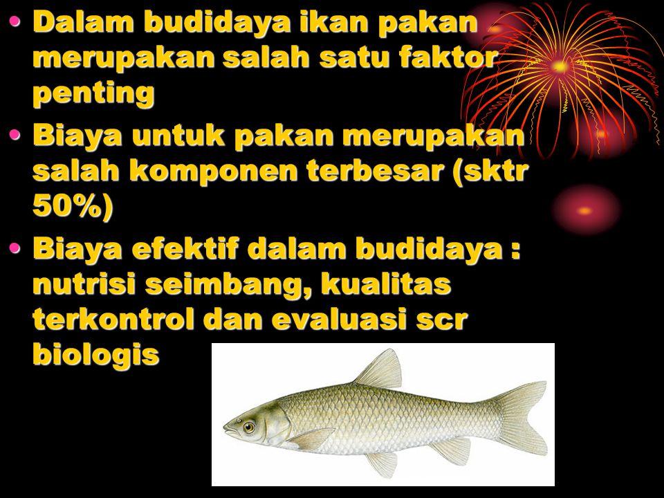 Dalam budidaya ikan pakan merupakan salah satu faktor penting