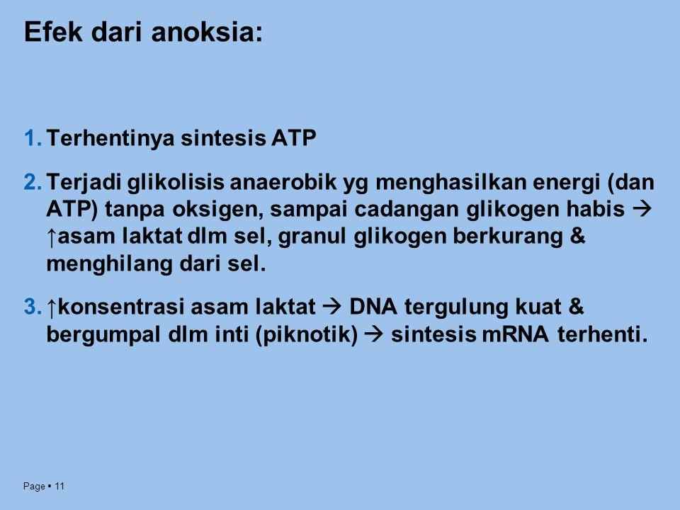 Efek dari anoksia: Terhentinya sintesis ATP