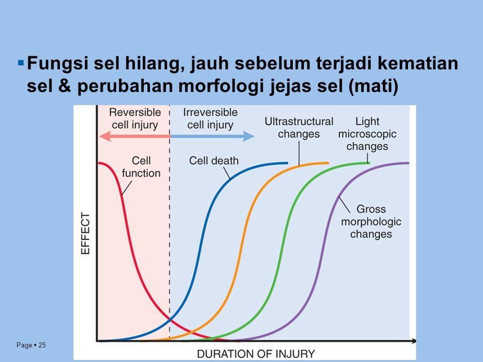 Fungsi sel hilang, jauh sebelum terjadi kematian sel & perubahan morfologi jejas sel (mati)