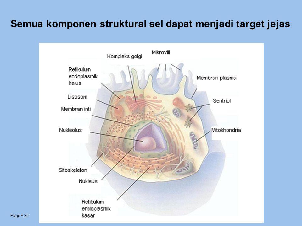 Semua komponen struktural sel dapat menjadi target jejas