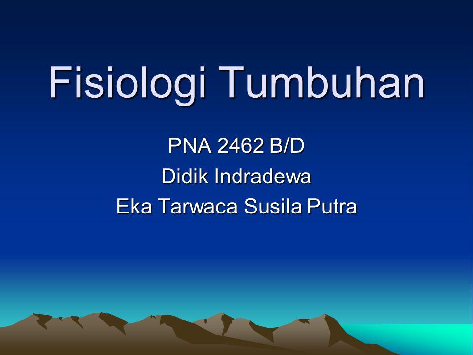 PNA 2462 B/D Didik Indradewa Eka Tarwaca Susila Putra