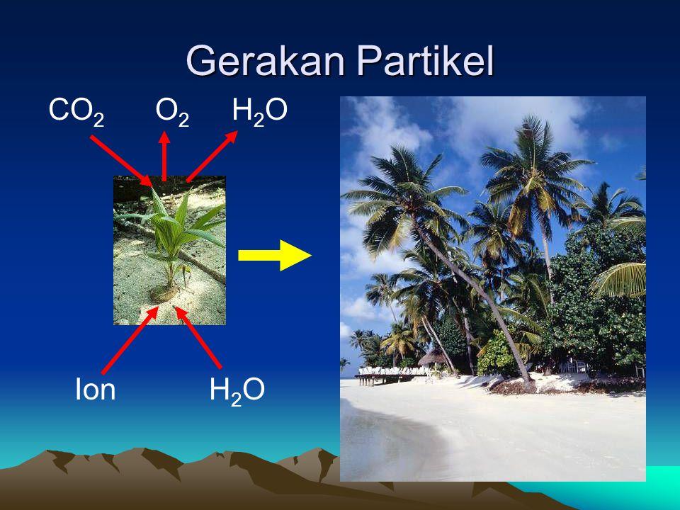Gerakan Partikel CO2 O2 H2O Ion H2O