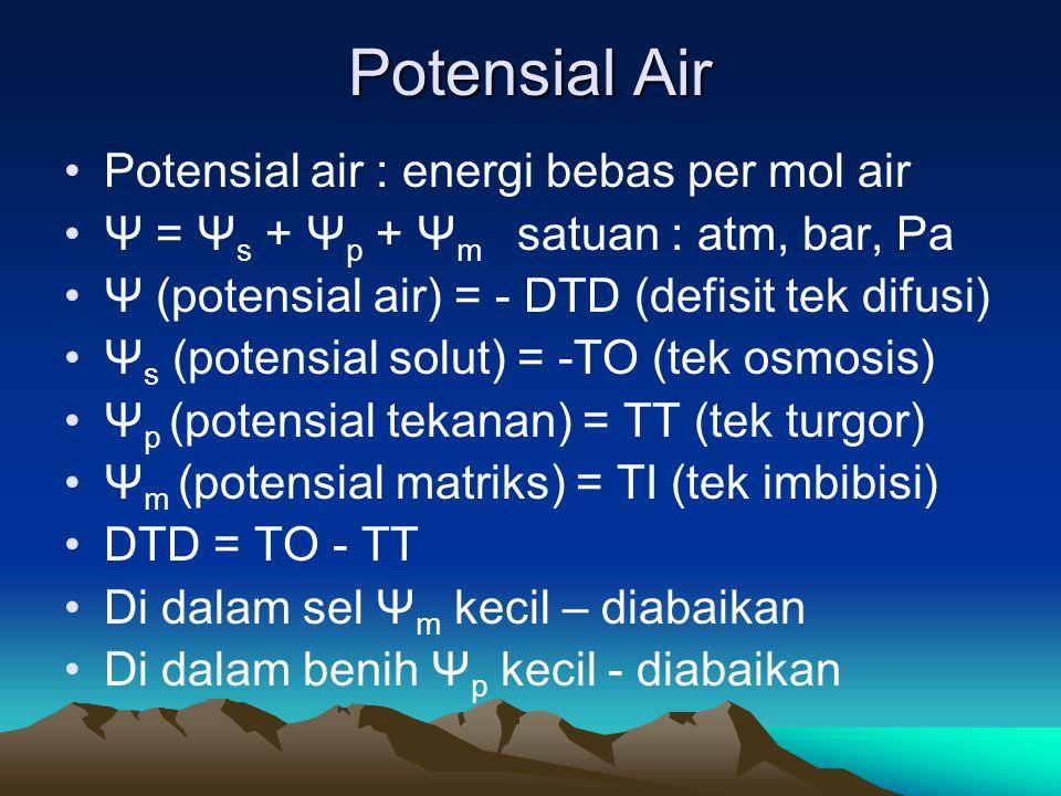 Potensial Air Potensial air : energi bebas per mol air