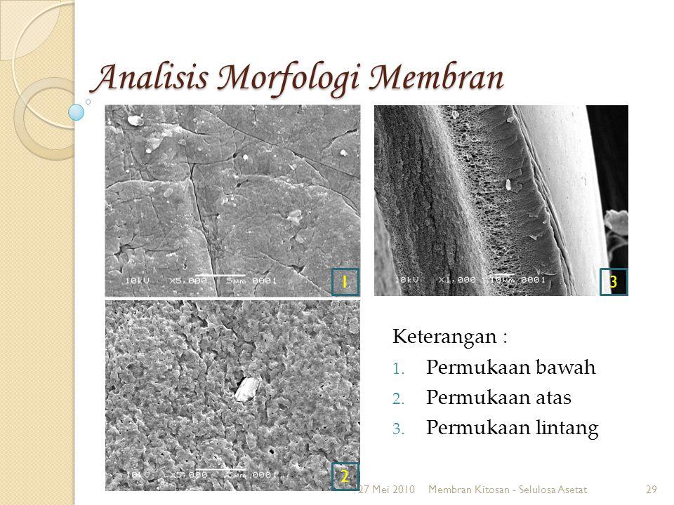 Analisis Morfologi Membran