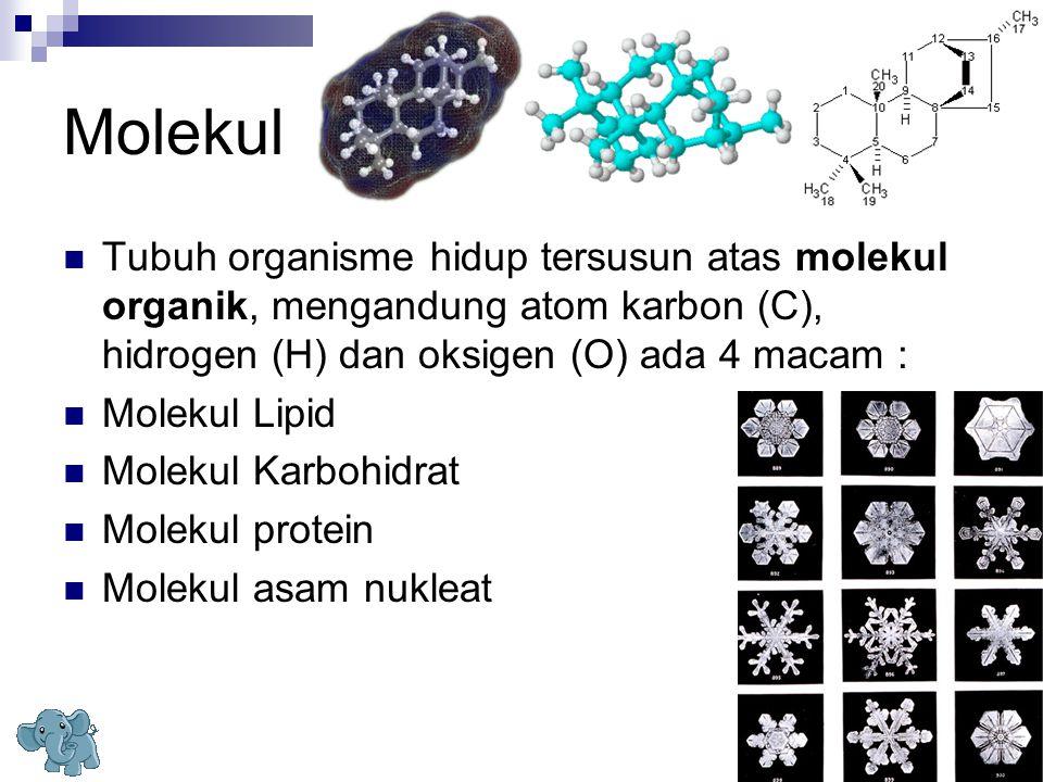 Molekul Tubuh organisme hidup tersusun atas molekul organik, mengandung atom karbon (C), hidrogen (H) dan oksigen (O) ada 4 macam :
