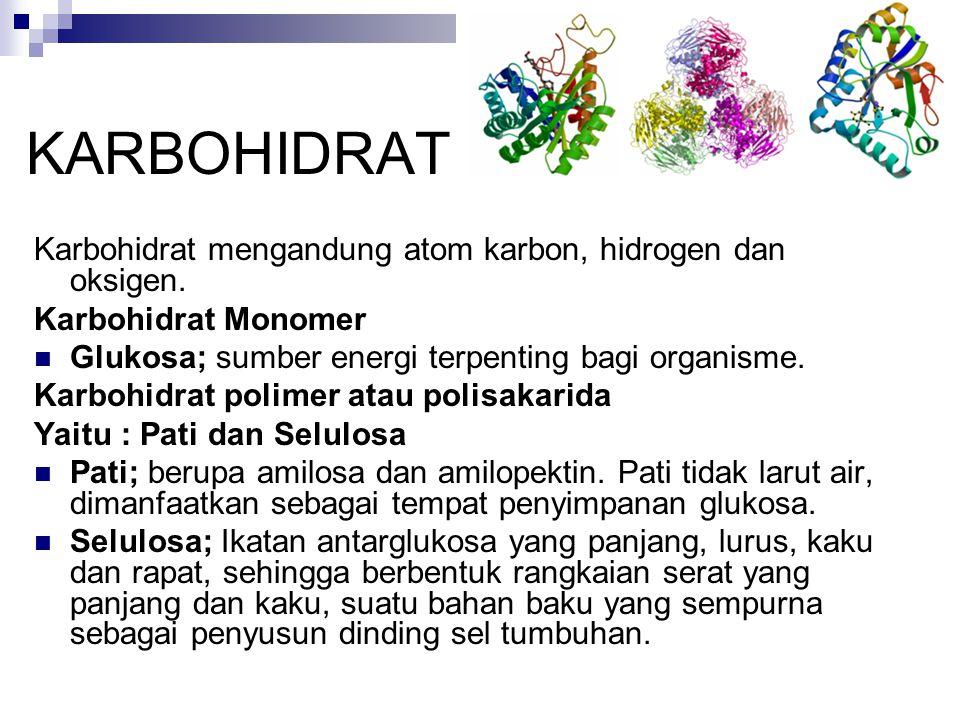 KARBOHIDRAT Karbohidrat mengandung atom karbon, hidrogen dan oksigen.