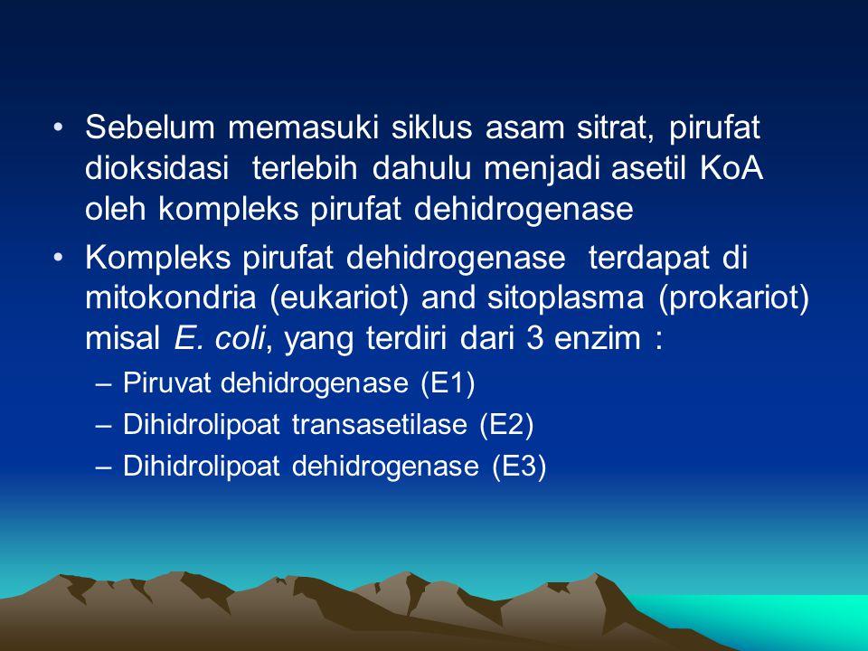 ENZIM Enzim adalah suatu protein yang ikut berperan dan mempengaruhi rekasi biokimiawi yang terjadi pada makhluk hidup.