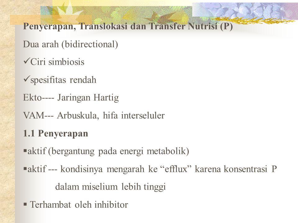 Penyerapan, Translokasi dan Transfer Nutrisi (P)