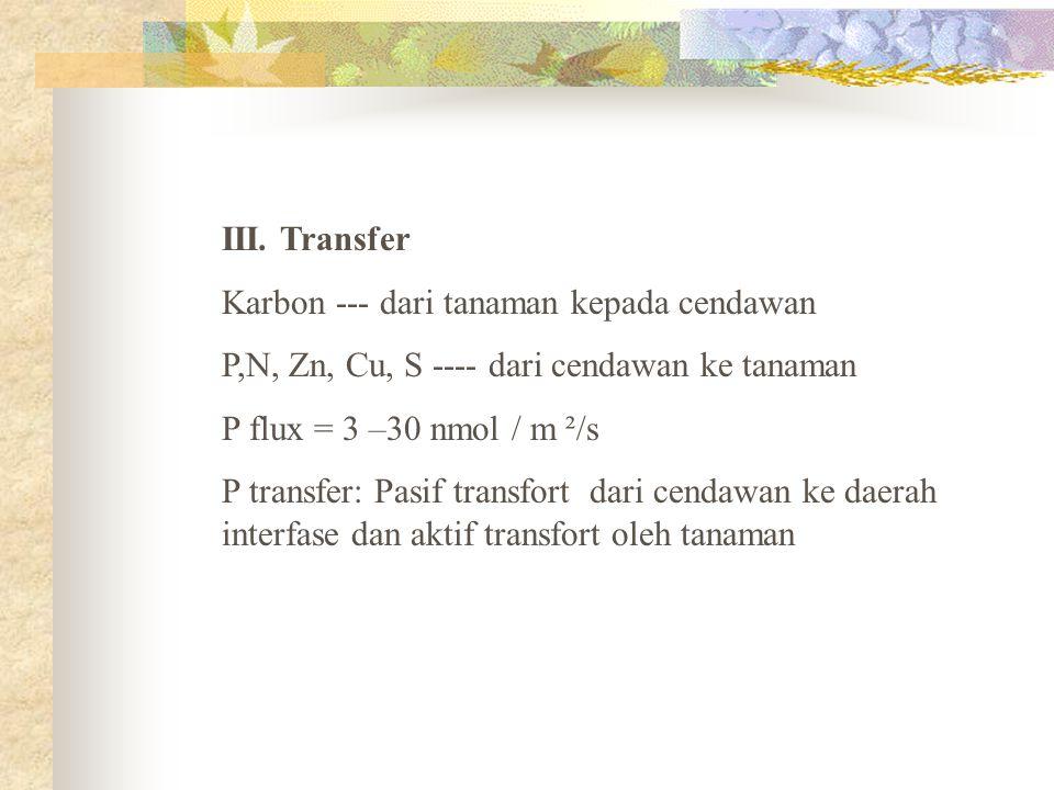 III. Transfer Karbon --- dari tanaman kepada cendawan. P,N, Zn, Cu, S ---- dari cendawan ke tanaman.