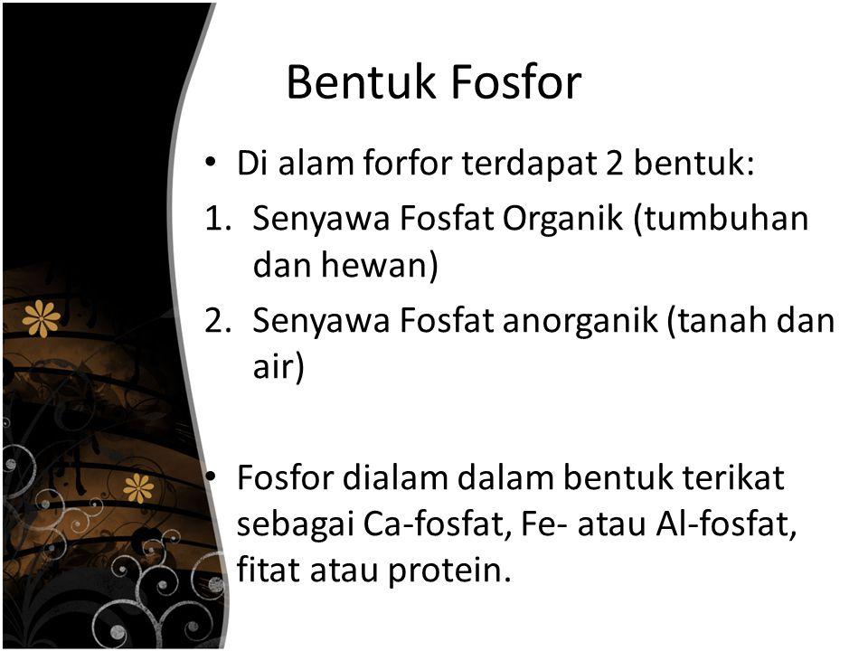 Bentuk Fosfor Di alam forfor terdapat 2 bentuk: