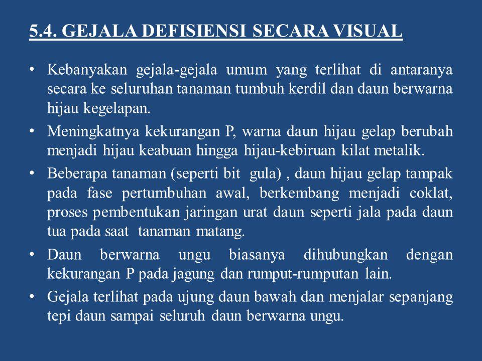 5.4. GEJALA DEFISIENSI SECARA VISUAL
