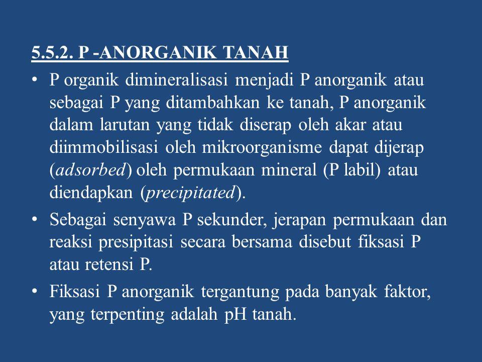 5.5.2. P -ANORGANIK TANAH