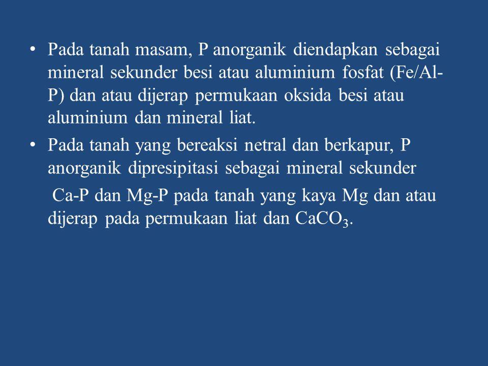 Pada tanah masam, P anorganik diendapkan sebagai mineral sekunder besi atau aluminium fosfat (Fe/Al-P) dan atau dijerap permukaan oksida besi atau aluminium dan mineral liat.