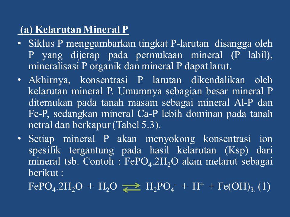 (a) Kelarutan Mineral P