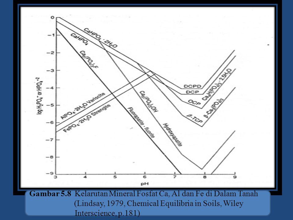 Gambar 5.8 Kelarutan Mineral Fosfat Ca, Al dan Fe di Dalam Tanah