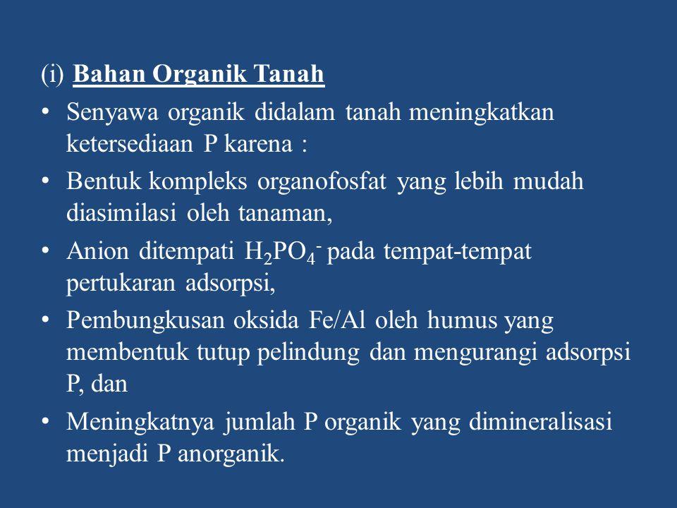 (i) Bahan Organik Tanah