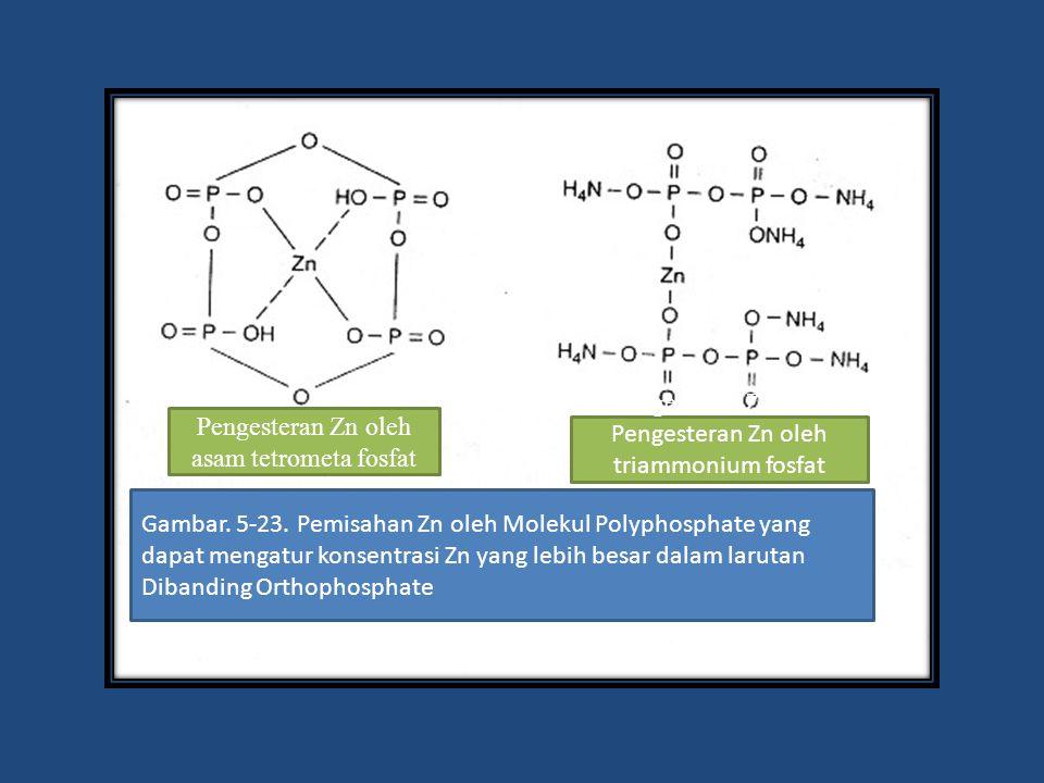 Pengesteran Zn oleh asam tetrometa fosfat